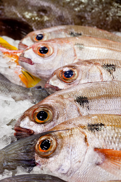 Sfyris Fish Market